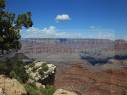 110816_wm_grand_canyon_C41G5542