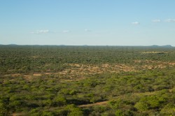 A view of the Okonjima Game Reserve