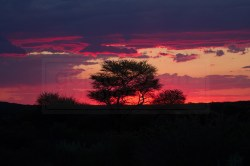 The sun sets at the Okonjima Game Reserve