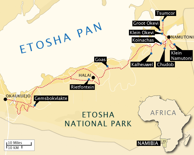 Travels in Etosha on Jan. 22, 2013.