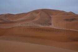 130116_wm_desert_tour_C45H2544