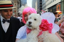 "This dog named ""Rue"" wears a bow and angel wings during the 2017 New York City Easter Parade on April 16, 2017. (Photo: Gordon Donovan/Yahoo News)"