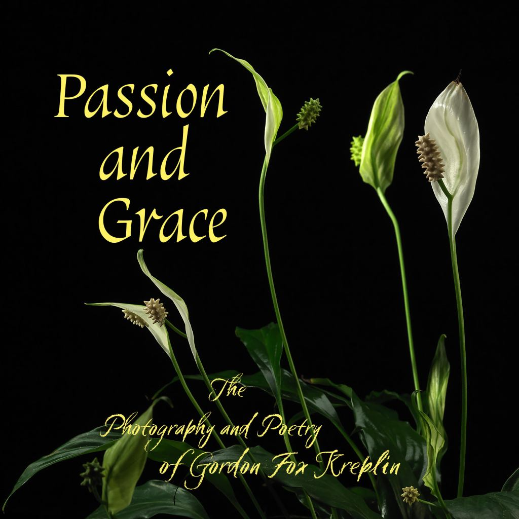 """Front book cover of """"Passion and Grace"""" by author Gordon Kreplin"""