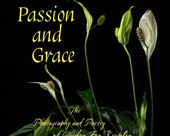 "Front book cover of ""Passion and Grace"" by author Gordon Kreplin"