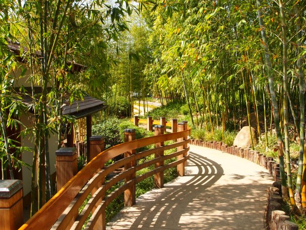 japanese gardens with bamboo Japanese rock garden | Gordon's Gardens