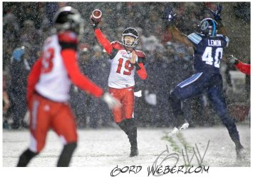greycup1051327