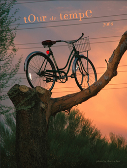 this bike is actually in a tree down in an old town Tempe neighborhood.