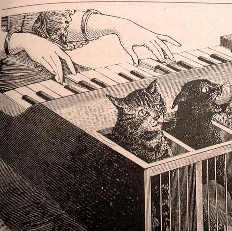 Catgut by Volker Neumann