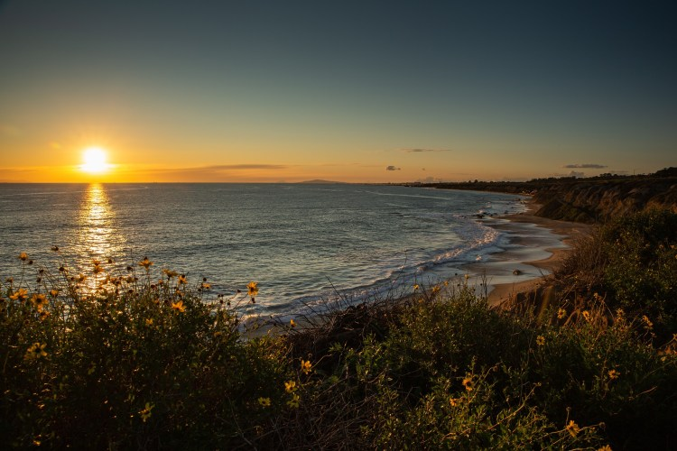 Crystal Cove is one of the best Orange County hiking trails!