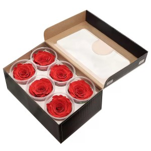 forever ecuador roses order online