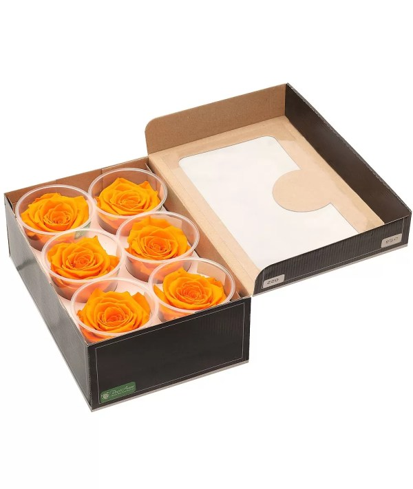 roses in a box, buy forever roses in a box, New York forever roses,