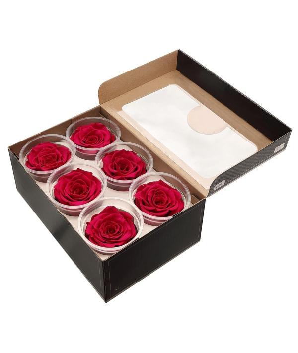 Ecuador roses buy online