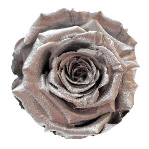 Silver rose order online