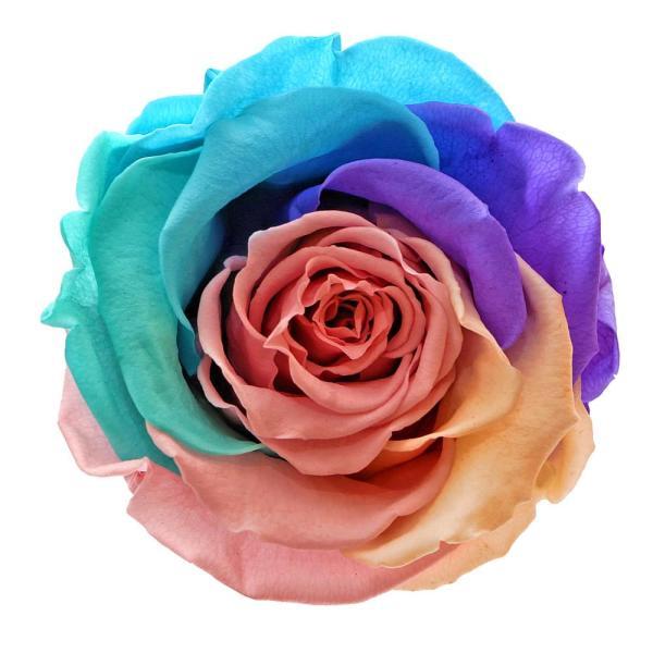 Forever roses custom made