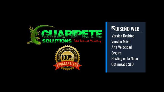 Servicios de Diseño Web Local e Internacional por Guaripete Solutions