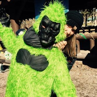 Gorilla Grunt pic1