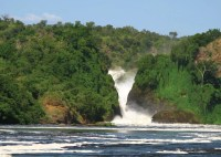 Murchison Falls Safari Adventure