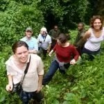 Coffee, Gorillas & Wildlife Safari - Gorilla Trekking in Uganda: The Adventure