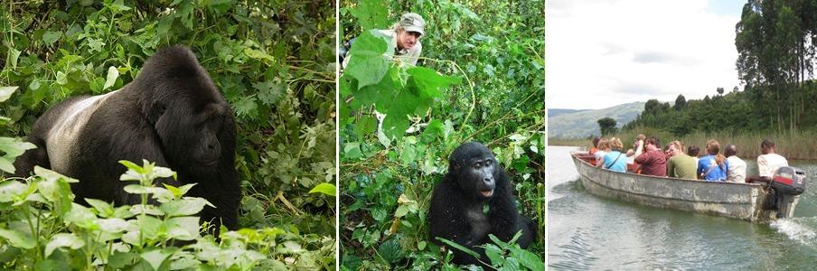 gorilla trekking and boat cruise