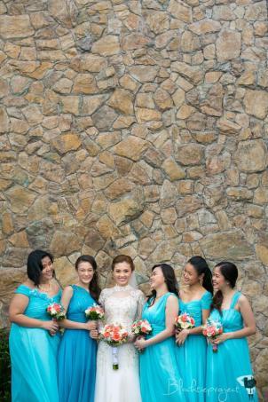 The Bride & The Bridesmaids