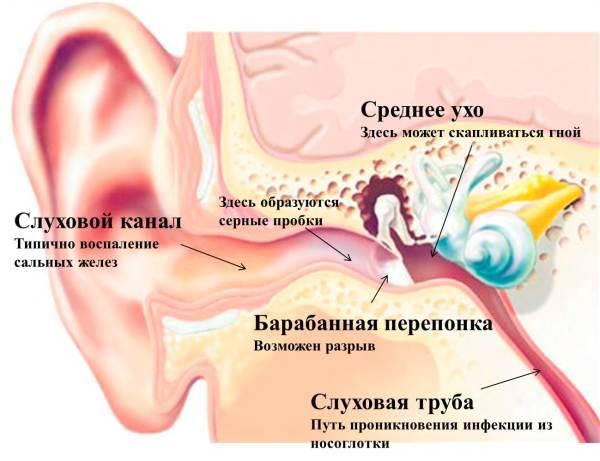 Болит горло и ухо заложило что может стать причиной