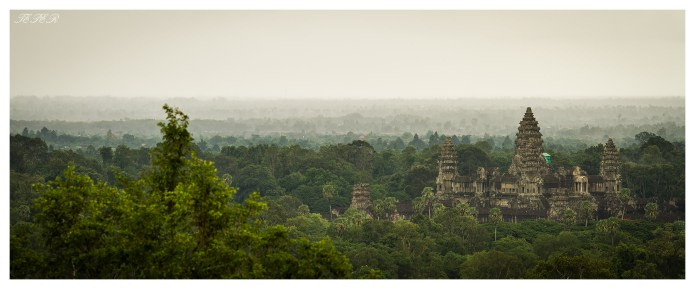 Angkor in the Jungle | 7D | 135L