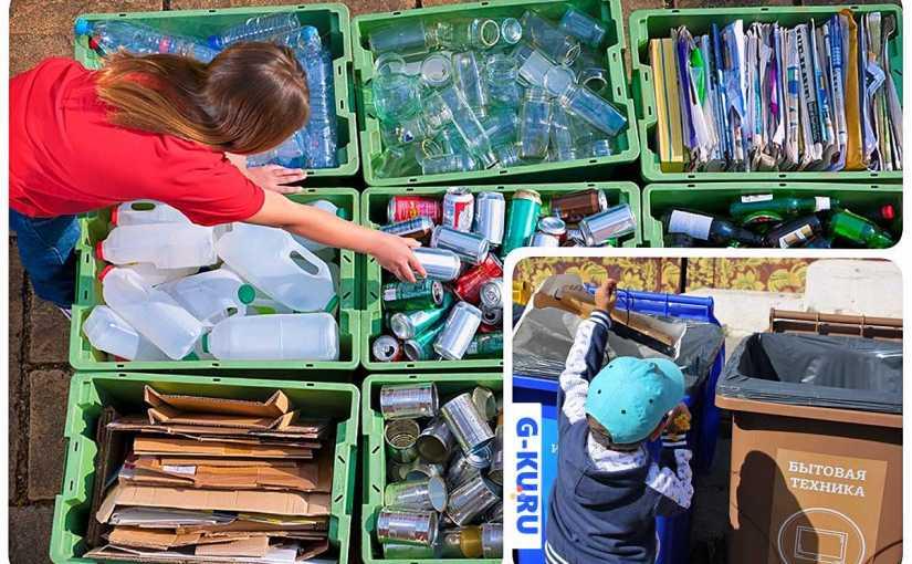 10 городов Свердловской области начнут сортировать мусор в отдельные контейнеры