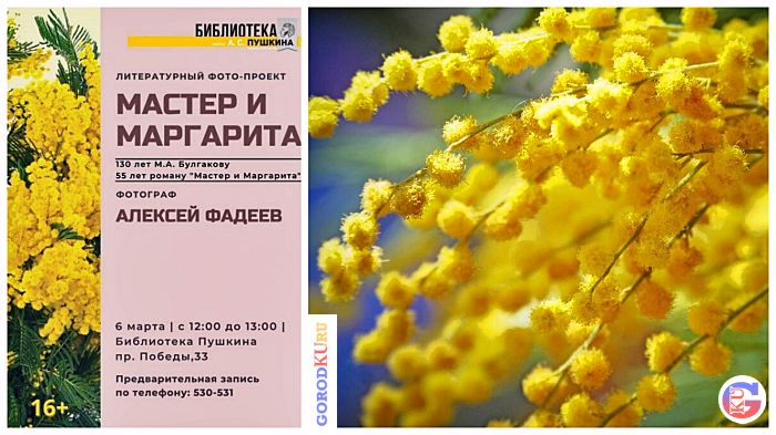 6 марта с 12-00 до 13-00 пройдет литературный фото-проект