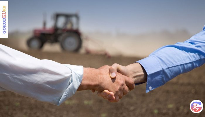 Финансовая поддержка фермерам из малых городов Свердловской области