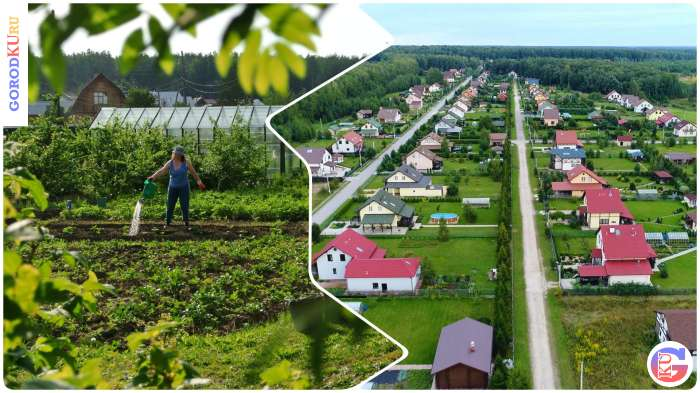 Гранты для свердловских садоводов на улучшение инфраструктуры
