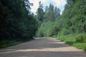 Грунтовая дорога к Волговерховью
