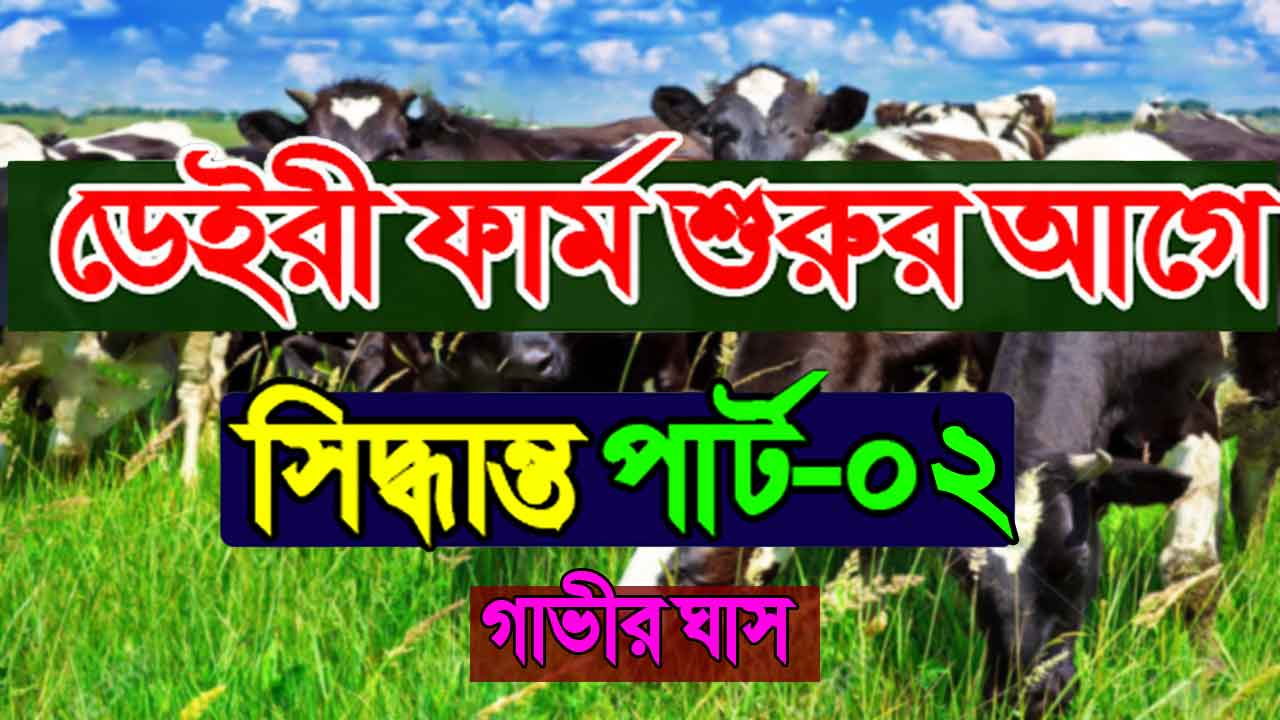 How important is cow grass in bangladesh