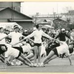 1969(昭和44)年度・9/55