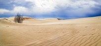 Sand Dunes Panorama - Silver Lake Sand Dunes
