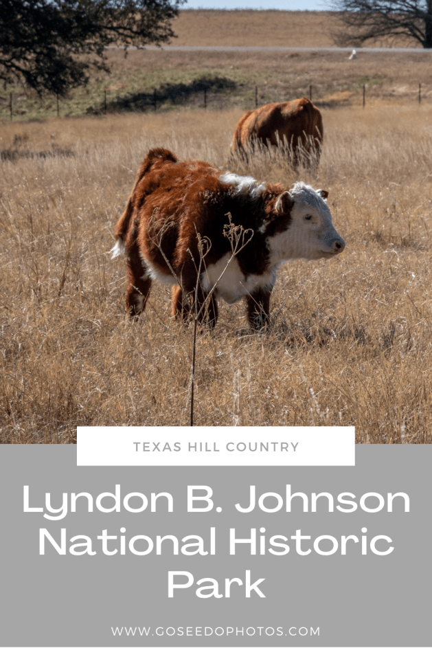 LBJ Ranch Pinterest Graphic