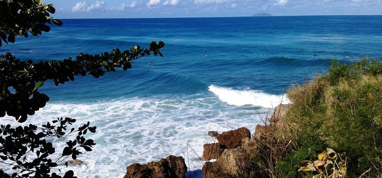 Indicators – Surf Spot in Rincon