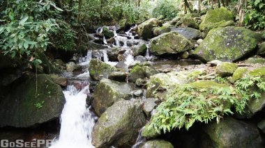 Juan Diego Falls San Sebastian Puerto Rico