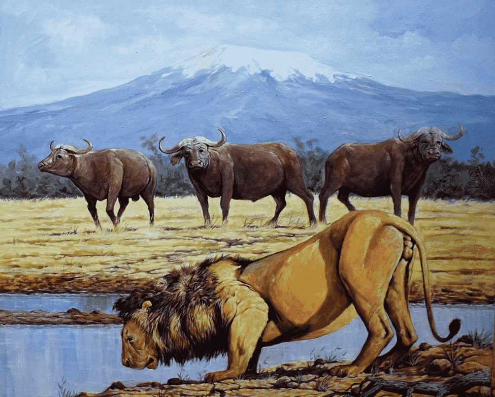 Painting of a lion drinking near the ngorongoro crater