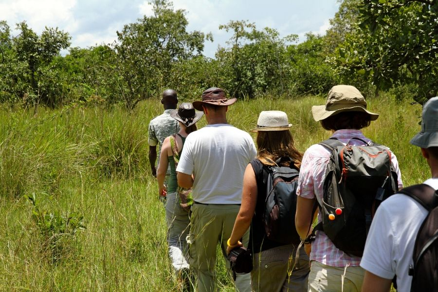 Tourists lining up on a field during a walking safari