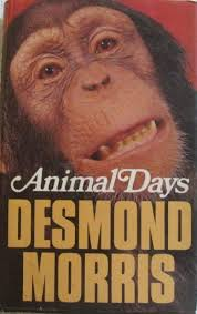 Animal Days-Desmond Morris book
