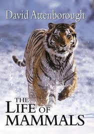 the-life-of-mammals-david-attenborough book