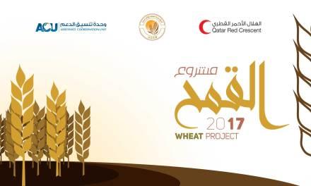 إطلاق مشروع القمح 2017