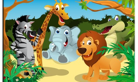 Learn about wild animals