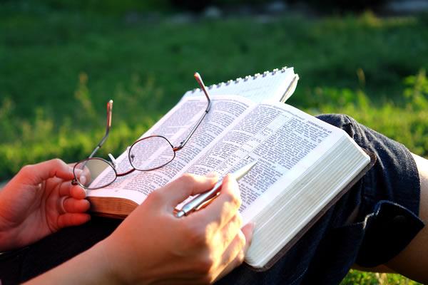 元エホバの証人・管理人の体験|聖書の真理を求め続けて