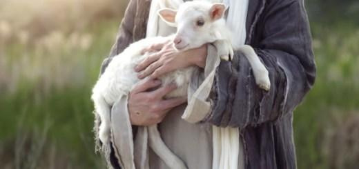 主は良い牧者!排斥をキッカケに本当のキリストの救いへと導かれる|元エホバの証人姉妹の体験談