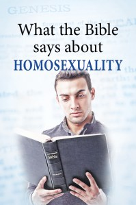 what the Bible says about homosexuality