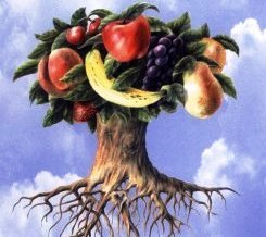 The Grace Imposter Addresses Part 27: Getting to the Root of the Fruit