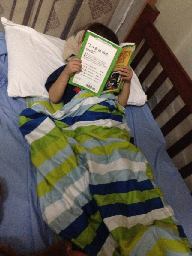 02.15-Someone gets stressed by packing so he curled up in his known blanket and read...good choice buddy!