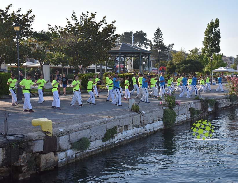 Για 2η συνεχόμενη χρονιά ολοκληρώθηκε επιτυχώς το Summer Camp Taekwon-Do του Ευκλέα Πρέβεζας