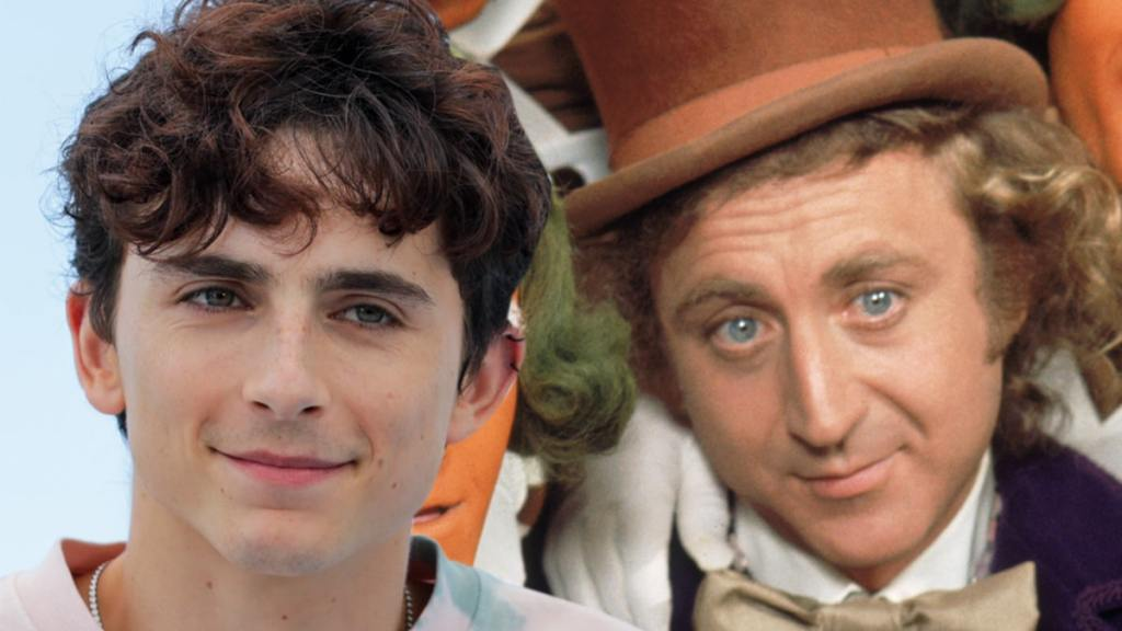Timothee Chalamet Shows Off First Look of Himself as Young Wonka